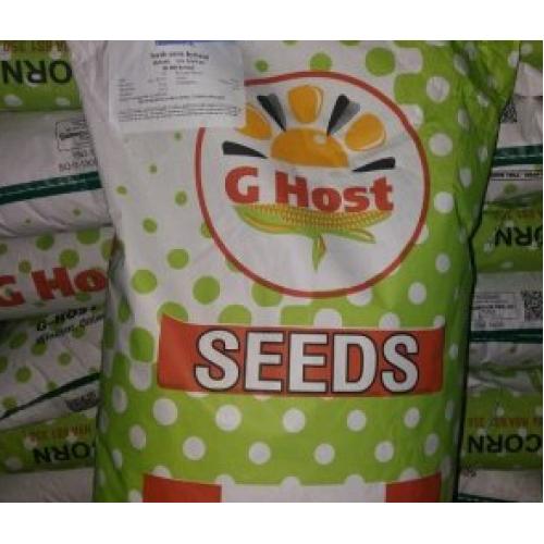 Семена кукурузы G Host GS 110