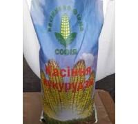 Семена кукурузы Голосеевский 260 СВ