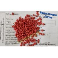 Семена кукурузы Галатея Максим XL + Алиос