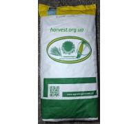 Семена кукурузы ДН Хортица