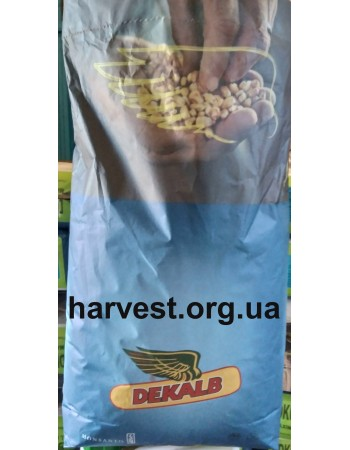 Семена кукурузы Монсанто DKC 3511
