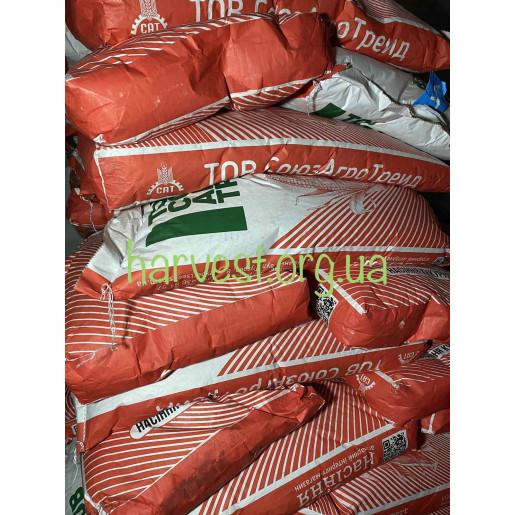 Семена кукурузы ДБ Хотин (Союз Агро Трейд)