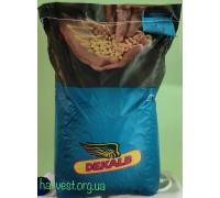 Monsanto ДКС 3361