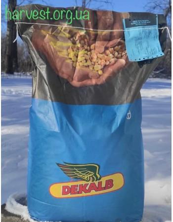 Семена кукурузы Monsanto ДКС 4943