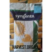 Семена подсолнечника Субаро HTS Syngenta