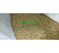 Семена сои Хайстар (Histar)
